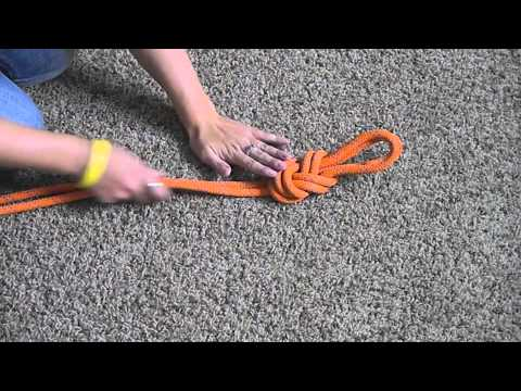 Beastailty Can You Get Knotted Videos