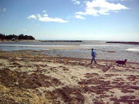 Broad Cove beach Nova Scotia April 12 2011