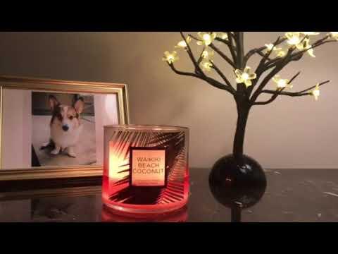 Bbw Waikiki Beach Coconut Candle Review Youtube