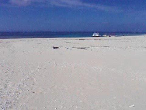 はての浜の砂浜の高い部分からナカノ浜を一望