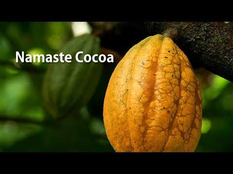 """Zotter: Cocoa movie India  - """"Namaste Cocoa"""" (22 Min. English)"""