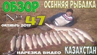 Осенняя рыбалка в Казахстане обзор № 47 нарезка видео  Нура Маншук Вячеславка, Ишим Раздольное