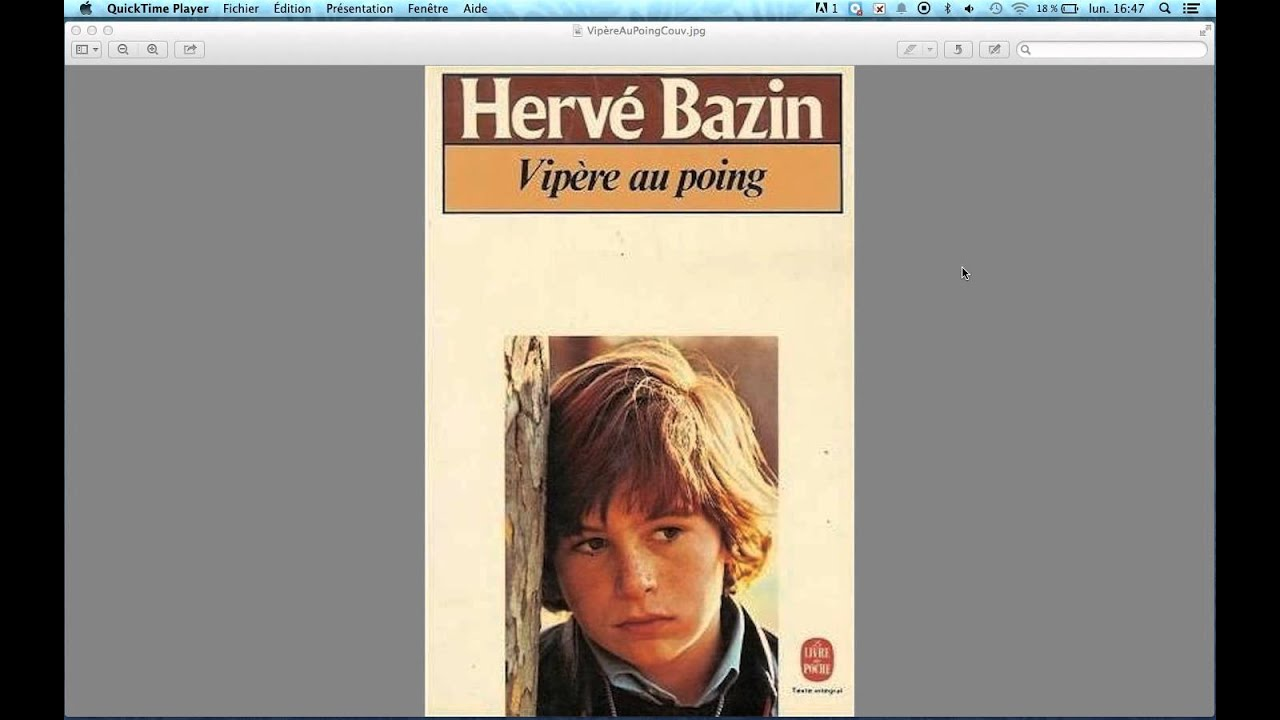 vipere au poing herve bazin resume chapitre | Movement and Meaning