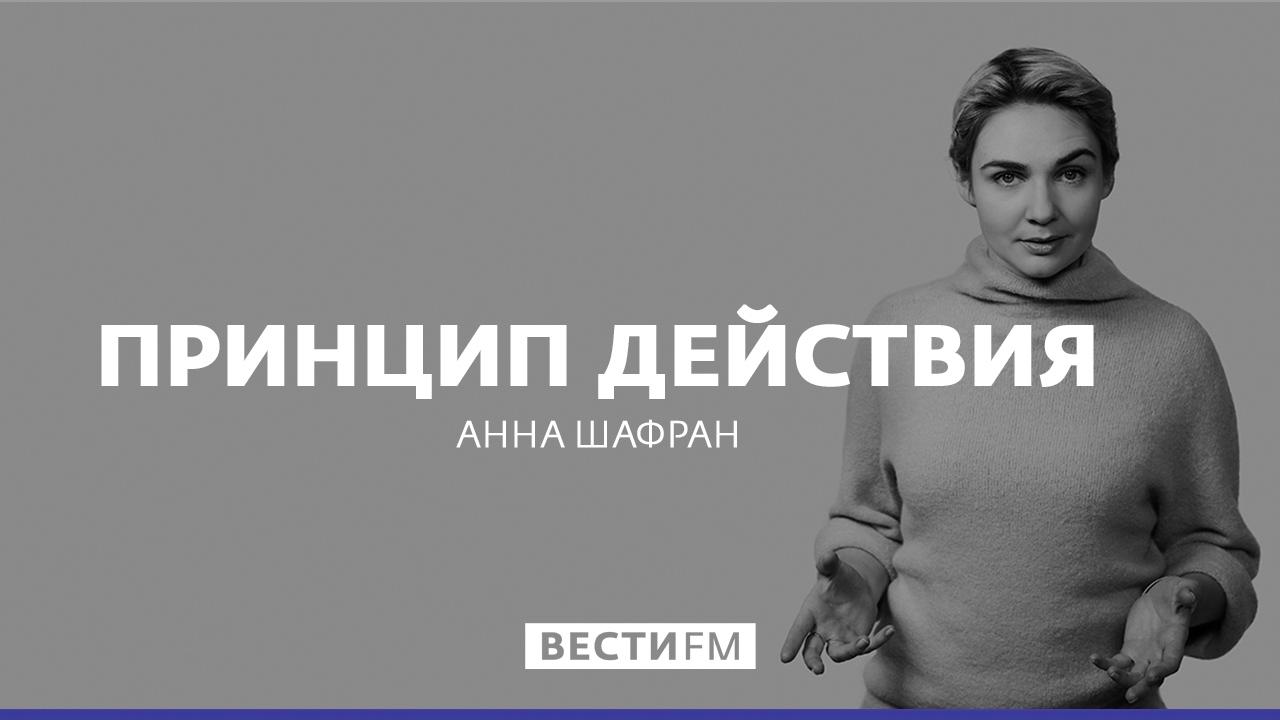 Принцип действия с Анной Шафран: Меркель пошла по стопам Гитлеpa, 22.02.17