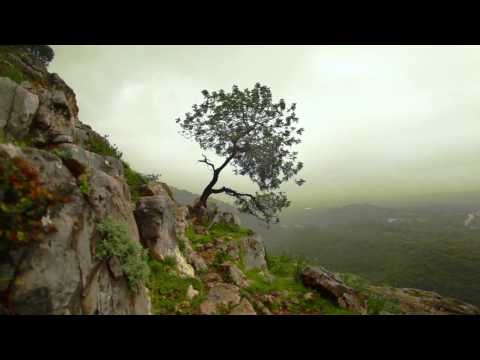 Enya - Storms in Africa HD