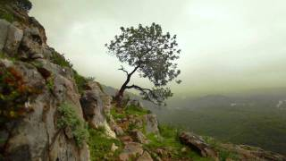 Enya - Storms in Africa HD