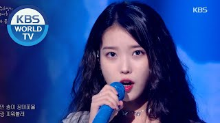 IU(아이유) - Blueming (Sketchbook) | KBS WORLD TV 200918