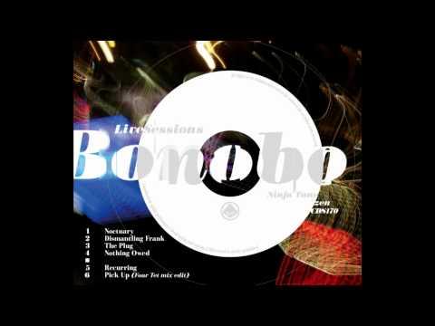 Bonobo - Nothing Owed live