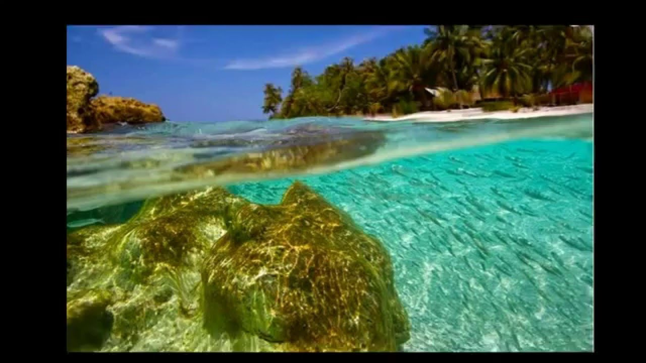 Indonesia Trip Indonesia Trip Asu Island Beach With Crystal Clear Sea Water In Nias Indonesia
