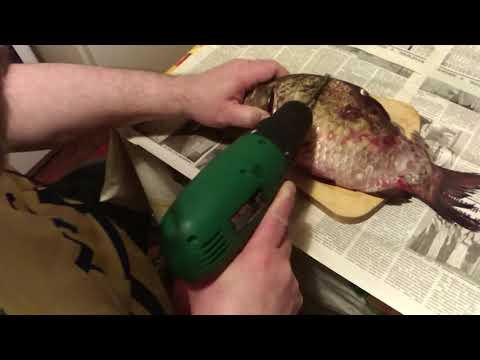 Чистить рыбу шуруповертом  - чисто, быстро и легко