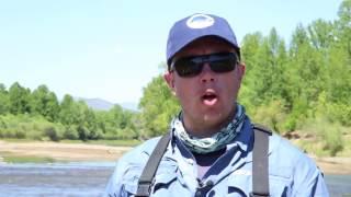 Обстеження риб річки ега