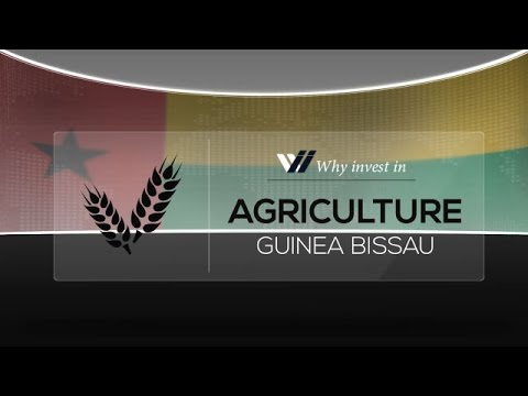 Agriculture  Guinea Bissau - Why invest in 2015