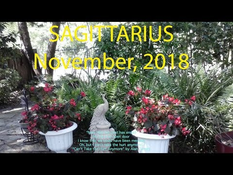 Sagittarius IT'S YOUR TIME! GIFT OF GOOD LUCK! NOVEMBER 2018 Tarot Reading