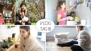 Das hat mich sehr verletzt - Daily Vlog #18 | Lovethecosmetics