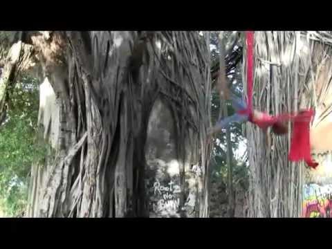 Jordann Baker Aerial Silks, Maui 2011