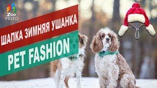 Шапка ушанка для собак Pet Fashion | Обзор шапки ушанки для собак Pet Fashion