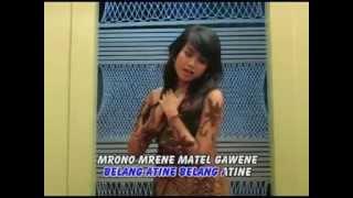 Single Terbaru -  Lele Segoro Suliyana Wmv