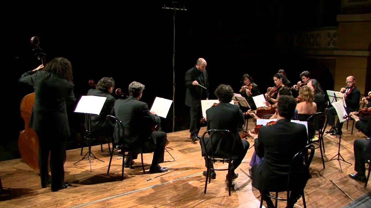 orchestra essays Orchestra Essays