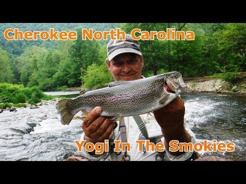 Jiggin' Jerry, Trout Fishing At Yogi In The Smokies In Cherokee 2018