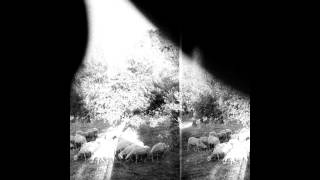 Godspeed You! Black Emperor- Peasantry or 'Light! Inside of Light! (2015)