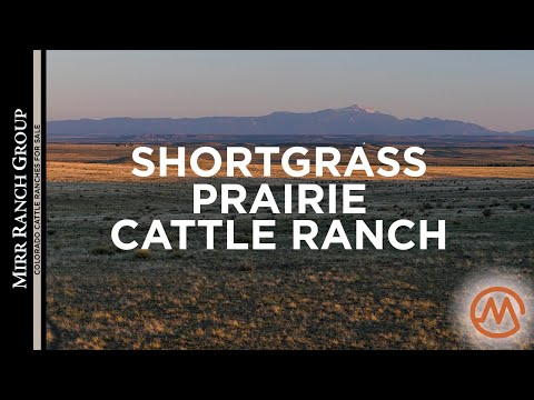 colorado-cattle-ranches-for-sale---bx-ranch