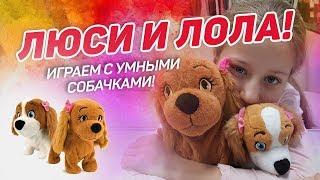 ЛЮСИ И ЛОЛА - СИДЕТЬ, ГОЛОС! Чудесные интерактивные собачки :)