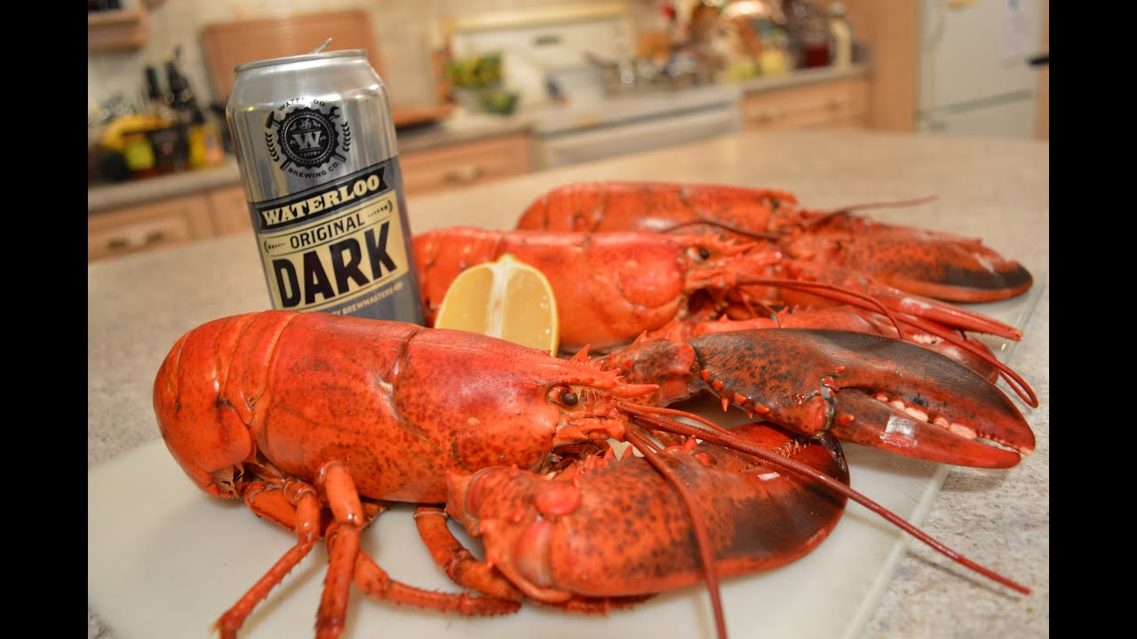 How to Steam Lobster with Beer: Cooking with Kimberly - YouTube