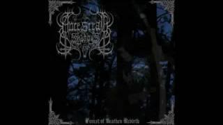 Ancestral Shadows - Forest of Heathen Rebirth
