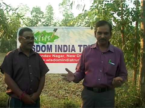 TAMCH - Documentary of Tanda Ayurvedic Medical College And Hospital - Final Edition