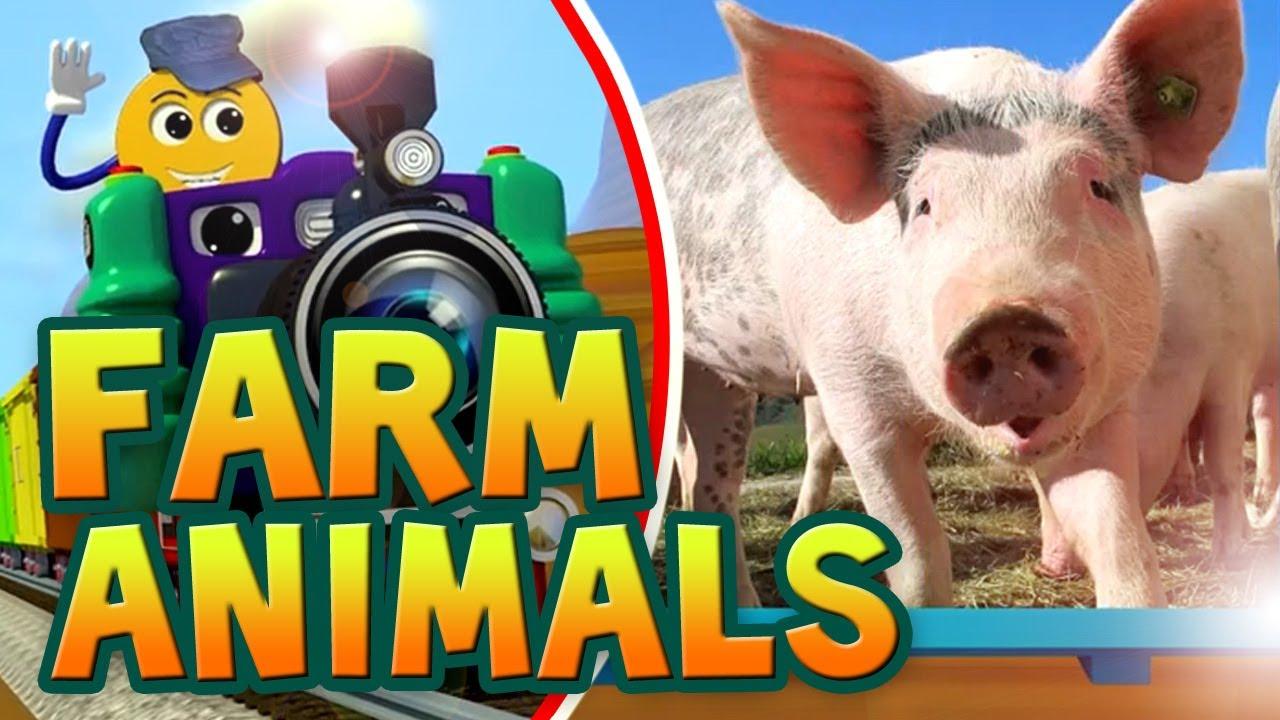 farm animals animal children learn farmer spelling