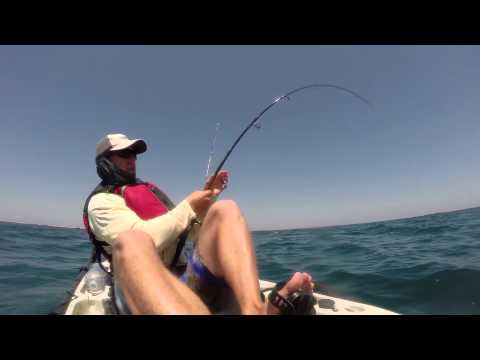 Catching 72 Lb Cobia From The Kayak Off Hatteras Island 5/14/14.  Www.SaltMinded.com