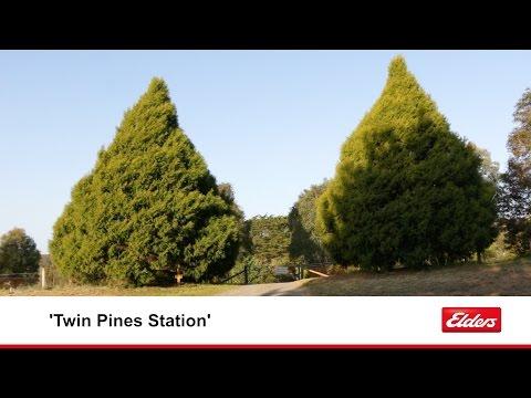'Twin Pines Station' Taralga NSW
