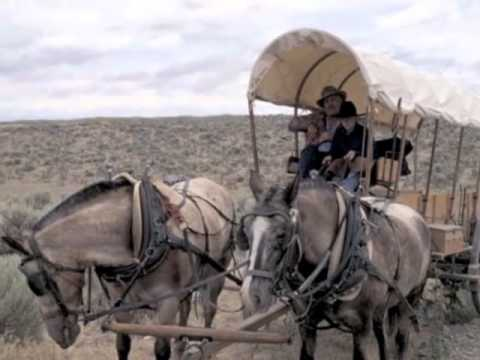 Why Study History:  8th Grade U.S. History Course Intro