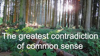 The Greatest Contradiction of Common Sense