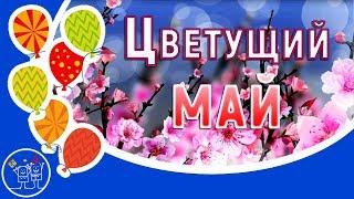 Весна цветы май. Красивый стих о весне Цветущий МАЙ. Видео открытка.