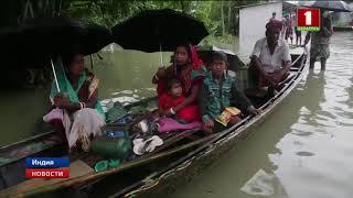 В Индии растет число жертв небывалых наводнений