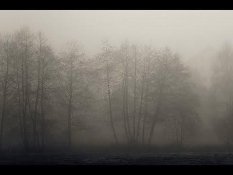 Arctica - Annuminas (Ambient, Dark Ambient, Field Recordings, Drone) [2014]