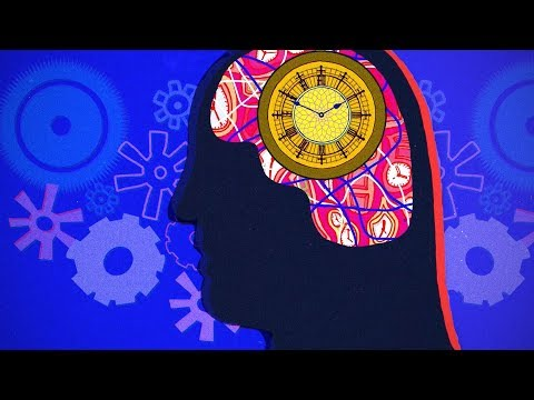 How Body Clocks Rule Our Lives | BBC Tomorrow's World