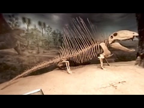 The Royal Tyrrell Museum in 360 Degrees