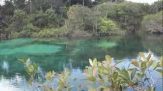 lagoa azul em primavera do leste
