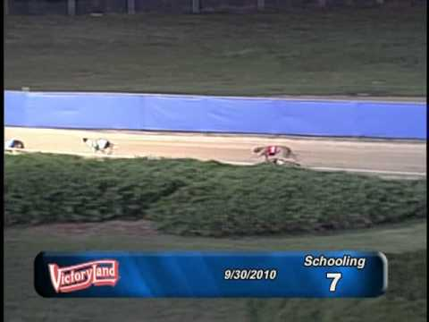 Victoryland 09/30/10 Schooling Race 7