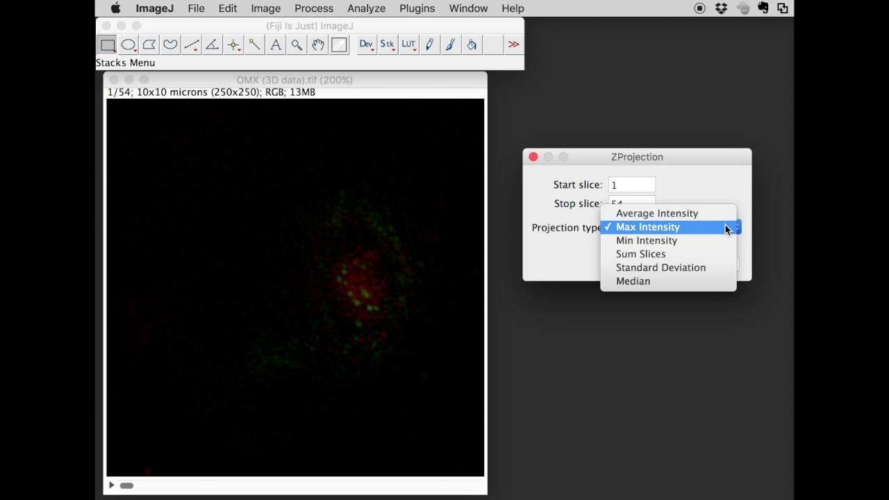 Imagej 3d data