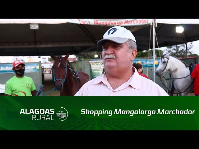 Shopping Mangalarga Marchador