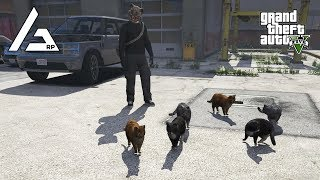GTA 5 Roleplay - ARP - #132 -  Cat Burglars!