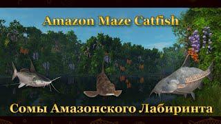 Fishing Planet Сомы Амазонского Лабиринта Amazon Maze Catfish