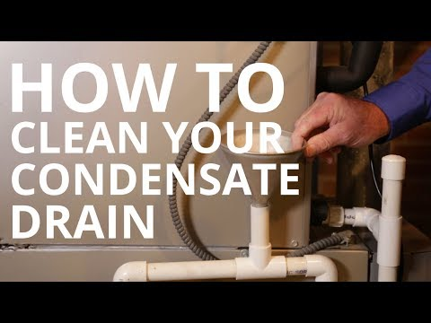 HVAC Maintenance: How to Clean Your Condensate Drain Line