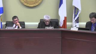 March 12, 2013 - Regular Council Meeting