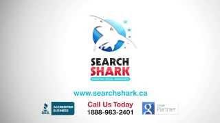 Search engine optimization SEO Brampton - 1(888) 983-2401 Call Now!