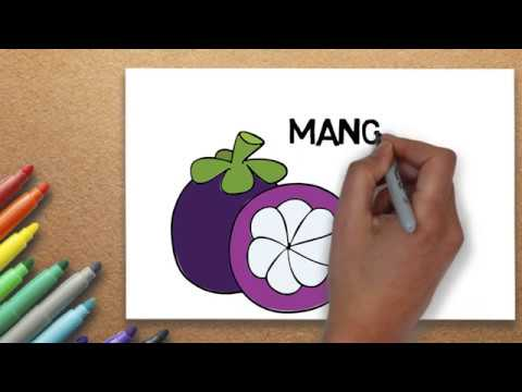 Mangosteen Drawing How To Draw Mangosteen Step By Step Massive