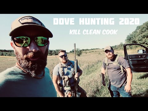 ONTARIO DOVE HUNTING 2020 ~ Kill Clean Cook